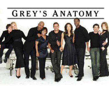 greys anatomy design